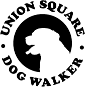 Union Square Dog Walker